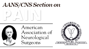 AANS/CNS Joint Section On Pain